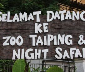 Taiping Zoo & Night Safari